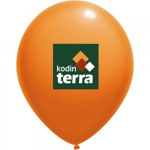 kodin-terra-300x300